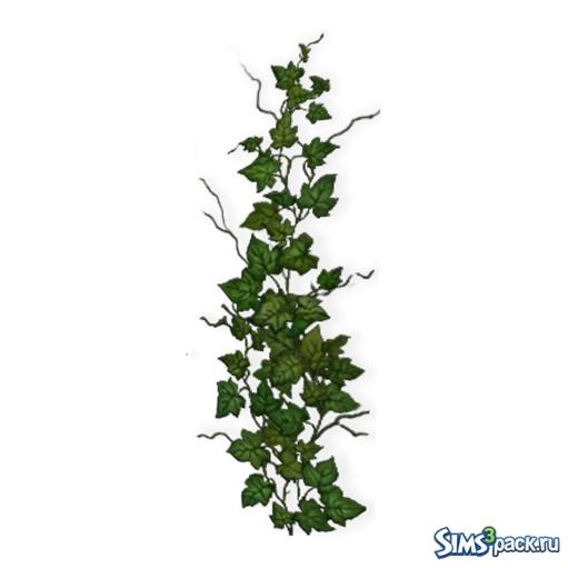 Скачать растение плющ к симс 3