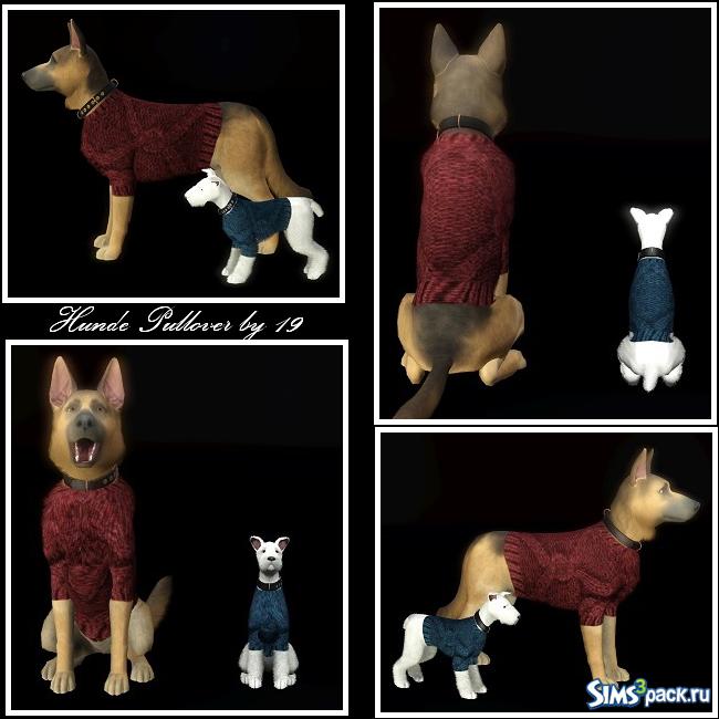 Одежда для больших собак рекомендации