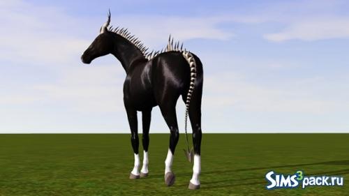 Кости для лошадей от Amanda Schrodinger