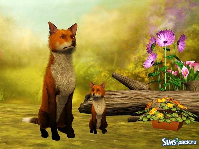 Скачать бесплатно программу лисичка